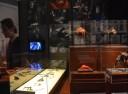 cronenberg exhibit photo