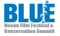 blue ocean film festival