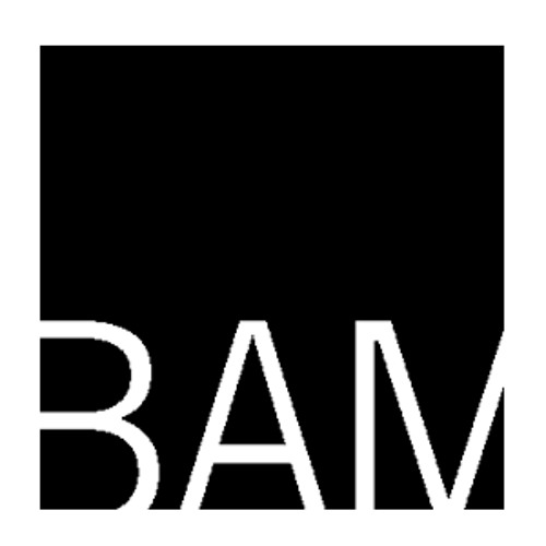 BAMlogo500x
